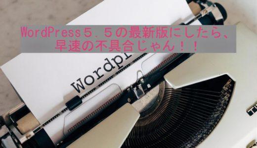 WordPress5.5の最新版にしたら、早速の不具合じゃん!!